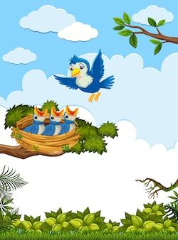 병아리와 자연의 어미 새