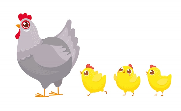 Chicks following chicken, spring easter chickens, hatched chick and hen family cartoon