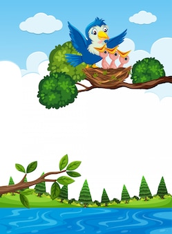 木の枝に巣の雛