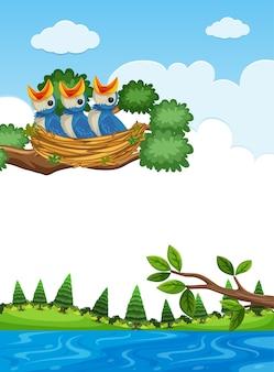 나뭇 가지에 둥지에 병아리
