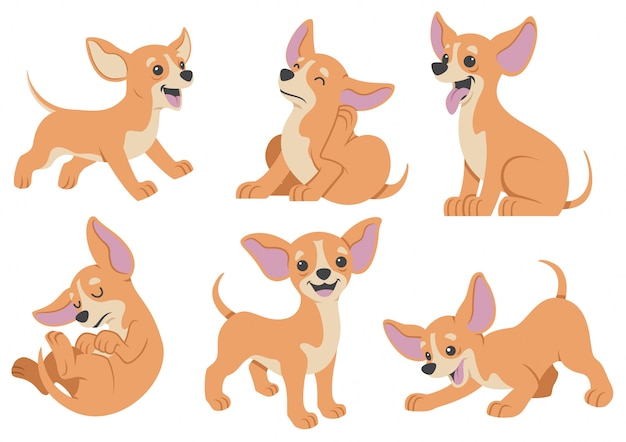 Chihuahua dog cartoon set