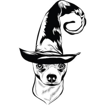Собака чихуахуа в шляпе ведьмы на хэллоуин