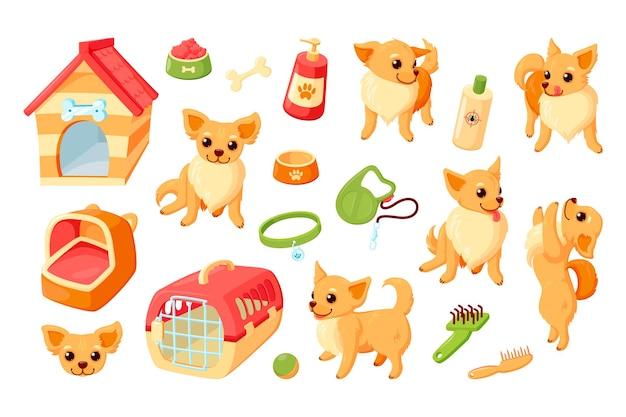 사육장, 캐리어, 장난감, 몸단장을 하는 치와와 개. 애완 동물 액세서리와 치와와 강아지
