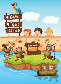 Дети смотрят на бобров в зоопарке