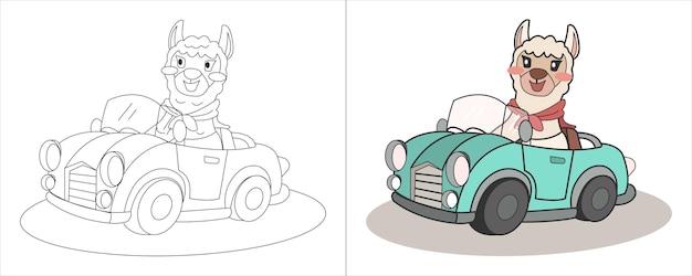 子供の塗り絵イラストアルパカ運転セダン車