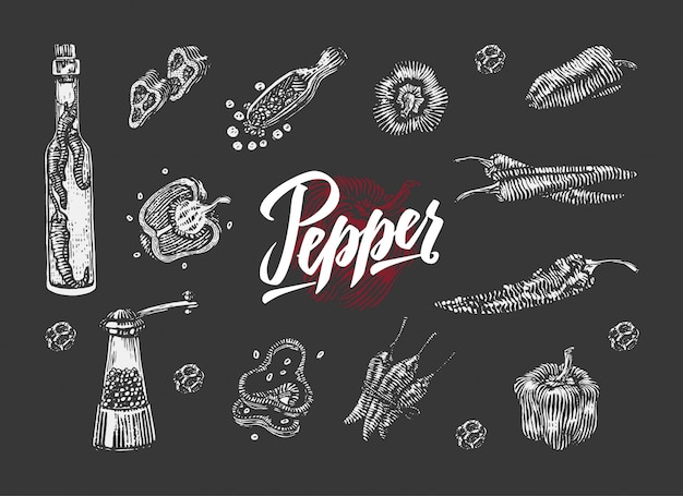 Chili pepper elements collection
