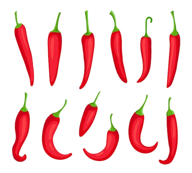 Перцы чили. мультфильм острый острый красный перец. кайенский перец и капсаицин для соуса чили. набор векторных элементов логотипа мексиканского перца. горящая органическая приправа для приготовления пищи