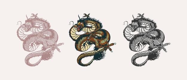 중국 용. 신화 동물 또는 아시아 전통 파충류.