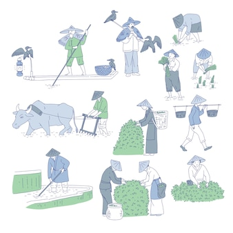 Chinese farmers and fishermen in traditional costumes.  line art set people plant rice, grow tea and go fishing. symbols of asian agricultural culture.