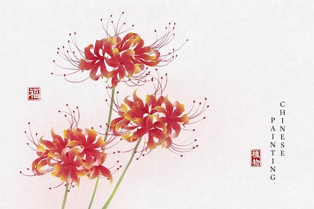 중국어 잉크 그림 아트 배경 식물 우아한 꽃 lycorisradiata