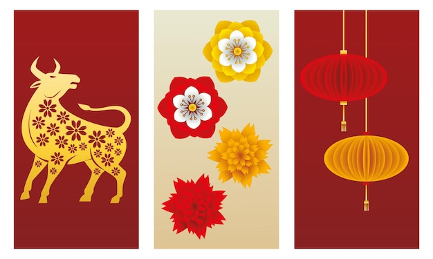 Chinese new year  ox and lamps hanging with flowers  illustration