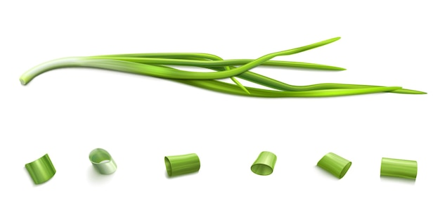 Chive bunch and cut slices green onion or garlic