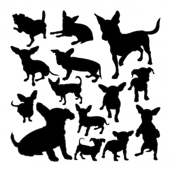 Chiweenie dog animal silhouettes