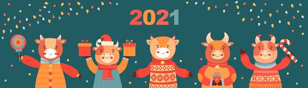 Рождество и новый год баннер. быки с подарками и конфетами. символ 2021 года бык. праздничный векторный фон