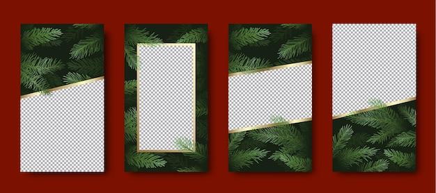 크리스마스와 새 해 벡터 인사말 카드 또는 포스터 세트. 복사 공간 또는 그림 장소와 소나무 가지 배경. 겨울 방학 소셜 네트워크 이야기 또는 장식 템플릿 컬렉션