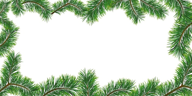 Christmas background with fir branches. frame and copyspace