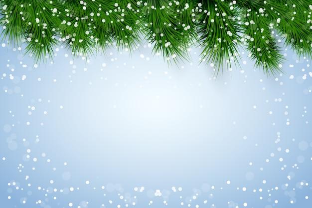 トウヒのモミの木と雪とクリスマスの背景。