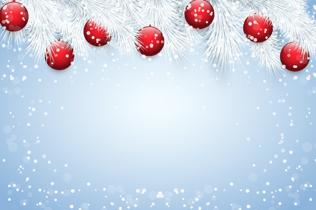 Christmas background with white snowy spruce fir tree and red glass balls.