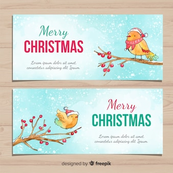 Christmas banner with watercolor birds