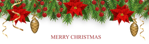 Christmas border decorations with fir branches, poinsettia, holly berries, baubles cones and golden ribbons. design element for xmas isolated on white background.