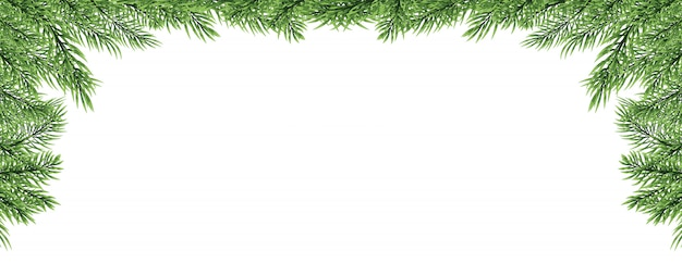 Christmas border with fir branch isolated on white background