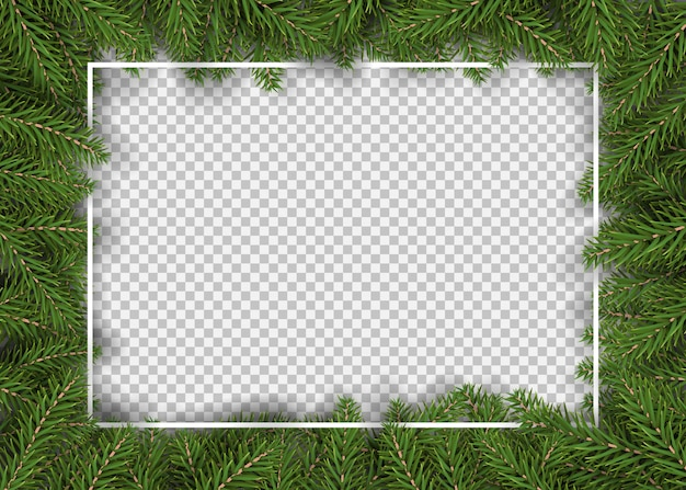 Christmas border with realistic fir branches