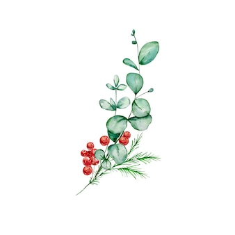 ユーカリとトウヒの枝とヒイラギとクリスマスの花束-水彩イラスト。
