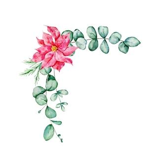 ポインセチア、ユーカリ、トウヒの枝とクリスマスの花束-水彩イラスト。