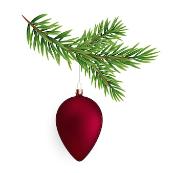 Christmas decorations. fir tree branch with ball
