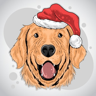 Christmas dog santa claus hat