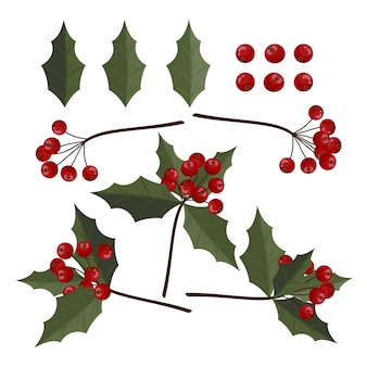 Christmas elements with set of holly leaves and berries.