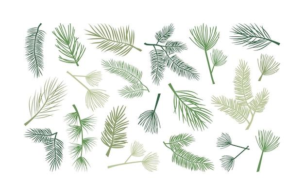 크리스마스 전나무 가지와 솔방울 홀리 식물과 상록수 삼나무 나뭇가지 새해 장식