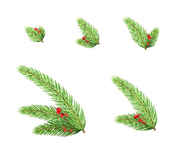 赤いベリーの要素が設定されたクリスマスのモミの枝