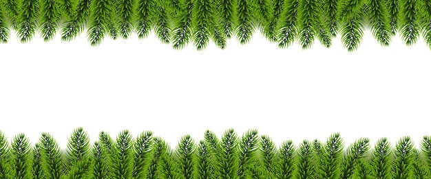 Christmas fir tree border and white background with gradient mesh