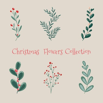 Christmas floral collection with winter decorative plants of winter berries  of a christmas tree
