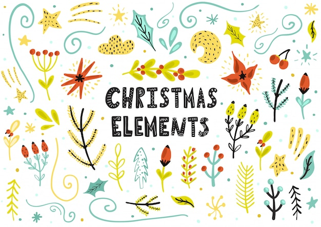 Christmas floral elements collection
