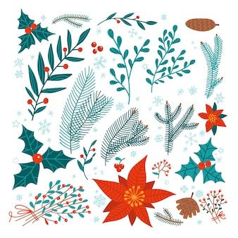 デザイン要素のクリスマスの花のセット-ポインセチア、ヒイラギ、松の木の枝、ヤドリギ、枝の束。冬の植物や花。