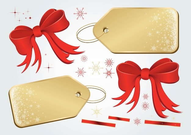 Christmas gift card  pack present vectors