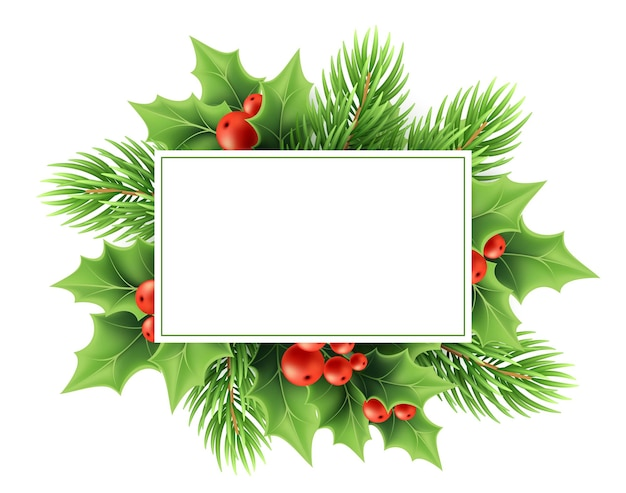 Christmas greeting card vector template. realistic holly tree branch, red berries, fir twig and text frame. xmas holly decoration. christmas plants. postcard, poster, banner design
