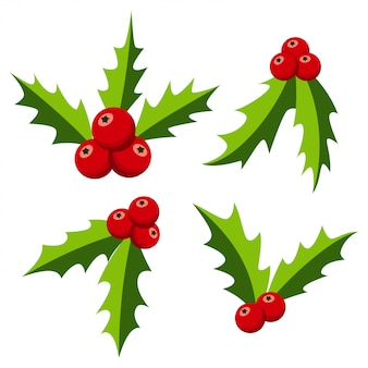 Christmas holly berry set.