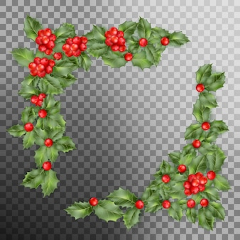 Christmas holly branch corner with berry on transparent background.