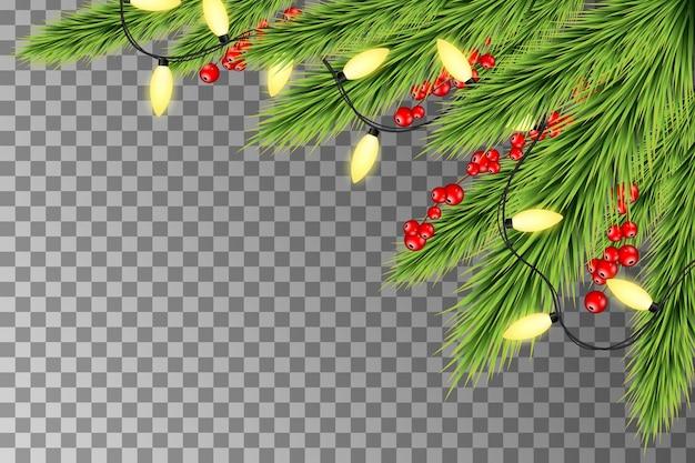전나무 가지와 열매와 크리스마스 조명입니다. 나무의 가지와 크리스마스 홀리데이 장식