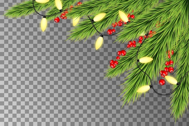 Christmas lights with fir branches and berries. christmas holiday decoration with branches of tree