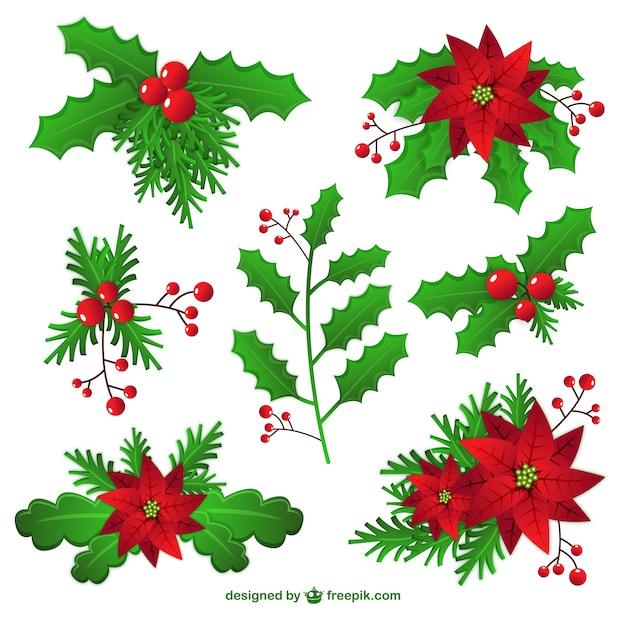 mistletoe vectors photos and psd files free download rh freepik com Mistletoe in Pieces Mistletoe in Pieces