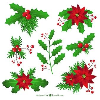 Christmas mistletoe decoration