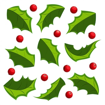 Christmas mistletoe leaves and berries set