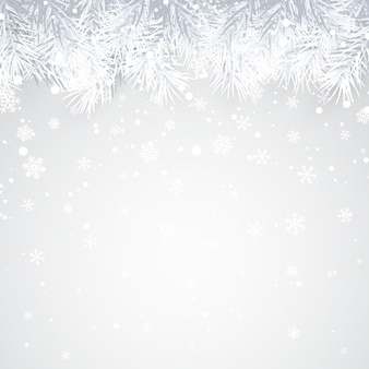 Christmas and new year background with fir branch and snow for xmas