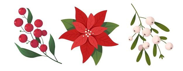 크리스마스 식물과 꽃