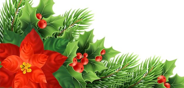 Christmas poinsettia flower realistic vector illustration. xmas decorative plants. holly twigs, red berries, poinsettia and fir branches christmas decoration. isolated banner, poster design element