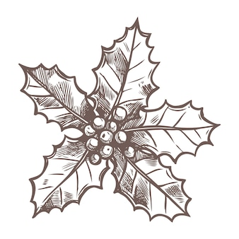 Christmas sketch with sketch holly in  hand drawn style. festive new year decoration